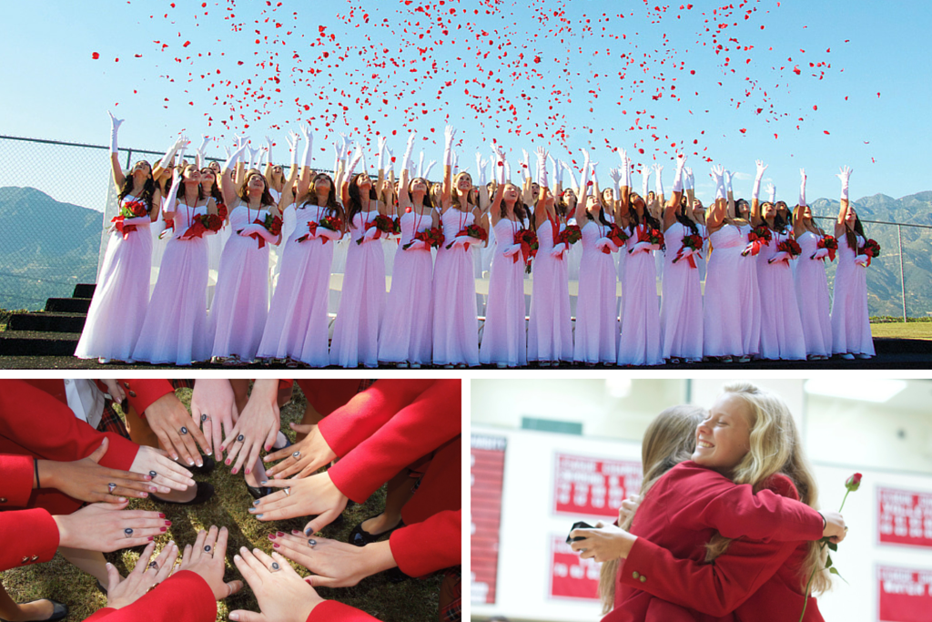 red rose traditions